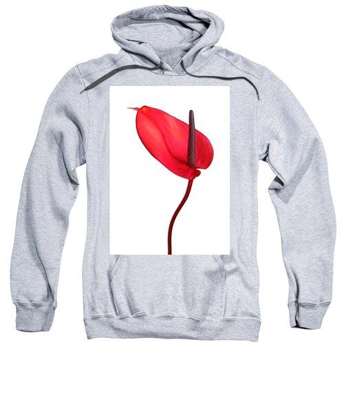Red Anthrium Sweatshirt