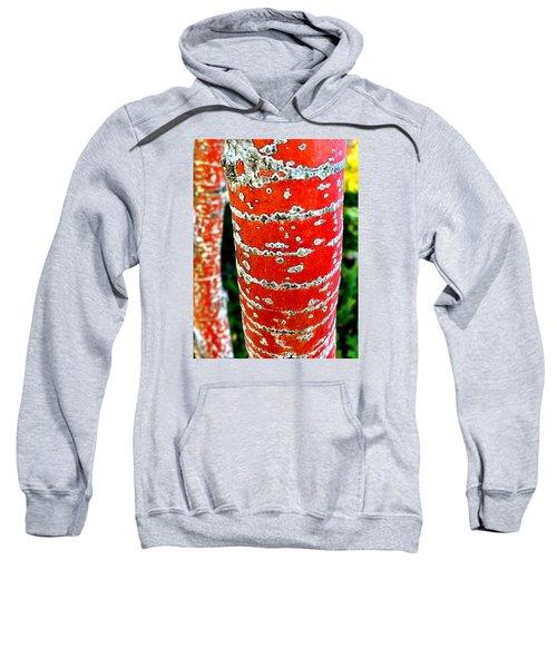 Red Bark Birch Sweatshirt