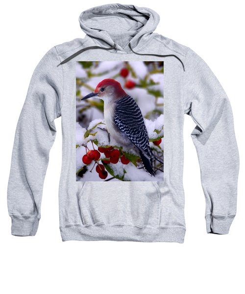 Red Bellied Woodpecker Sweatshirt