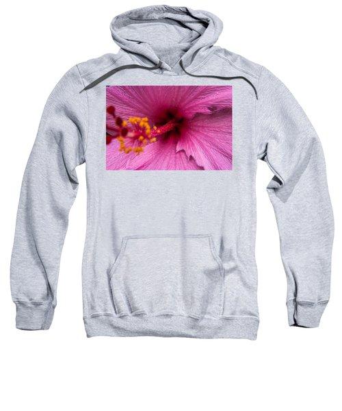 Red Bloom - Pla302 Sweatshirt