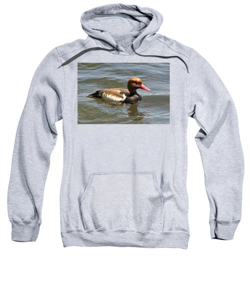 Red-crested Pochard Sweatshirt