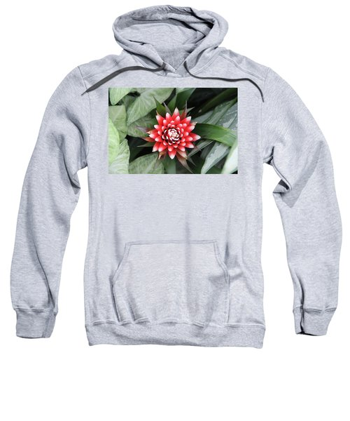 Red Flower With White Tips Sweatshirt