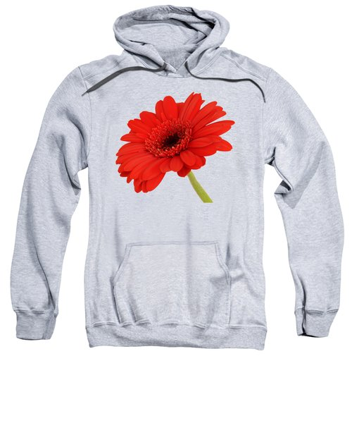 Red Gerbera Daisy 2 Sweatshirt by Scott Carruthers