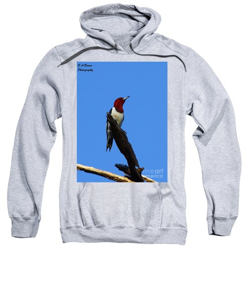 Red Headed Woodpecker On A Snag Sweatshirt
