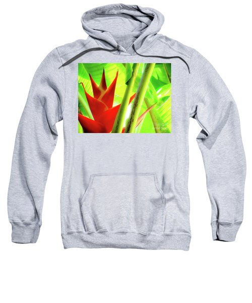 Red Heliconia Sweatshirt