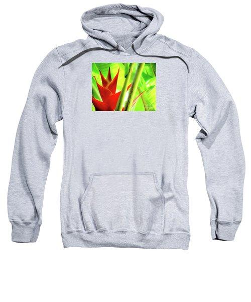 Red Heliconia Sweatshirt