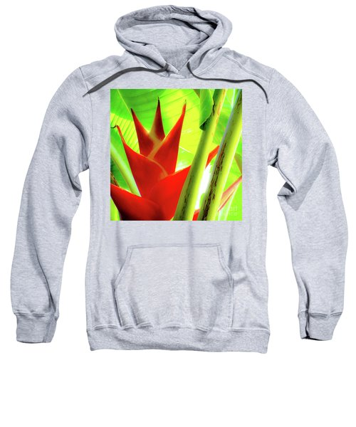 Red Heliconia Plant Sweatshirt