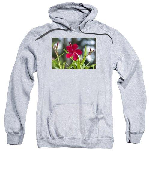 Red Hibiscus, Sri Lanka Sweatshirt