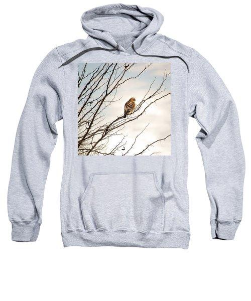 Red-tailed Hawk Sweatshirt