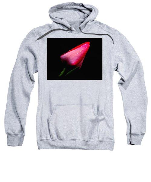 Red Tulip With Raindrops Sweatshirt