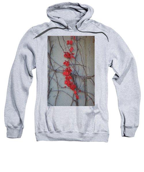 Red Vines Sweatshirt