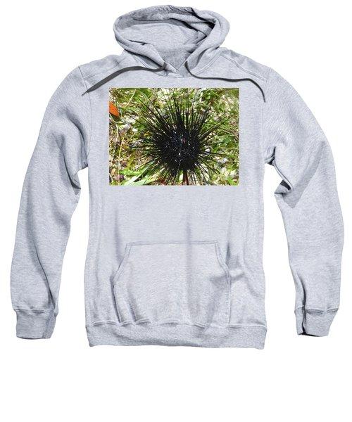 Reef Life - Sea Urchin 1 Sweatshirt by Exploramum Exploramum