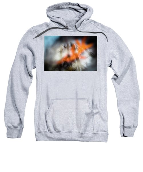 Reflection Of Trees Over An Oak Leaf Encased In Water And Ice Sweatshirt