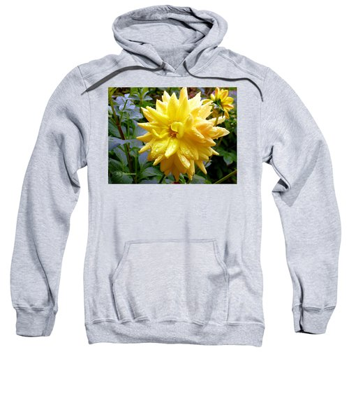 Refreshed Dahlia  Sweatshirt