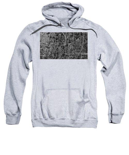 Reminder Of Winter  Sweatshirt