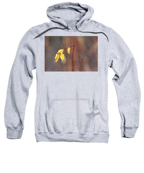 Remnants Sweatshirt