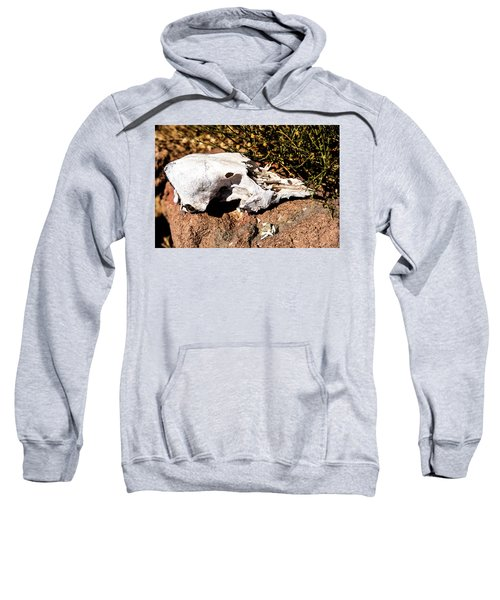 Reversal Of Fortune Sweatshirt