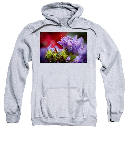 Rhododendron Bluebird Sweatshirt