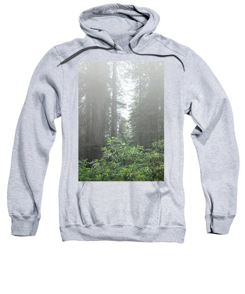 Rhododendrons In The Fog Sweatshirt