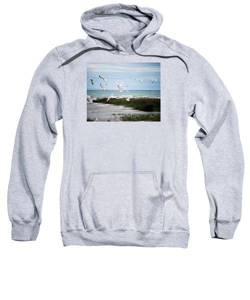The Magic Of Flight Sweatshirt