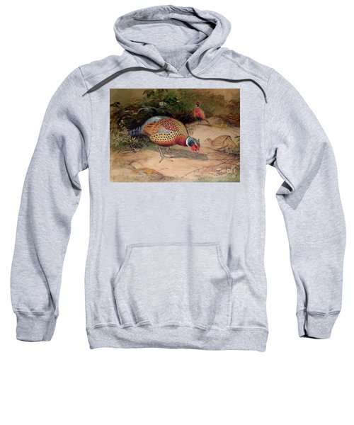Ring Necked Pheasant Sweatshirt