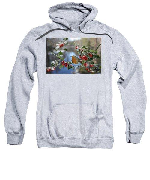 Robin On Holly Branch Sweatshirt