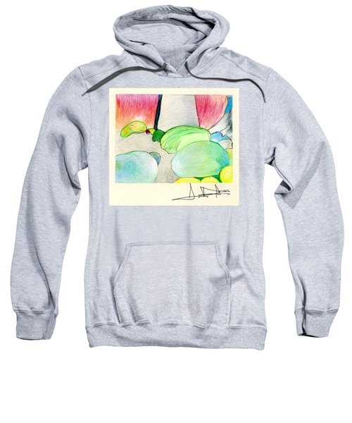 Rocks On Path Sweatshirt