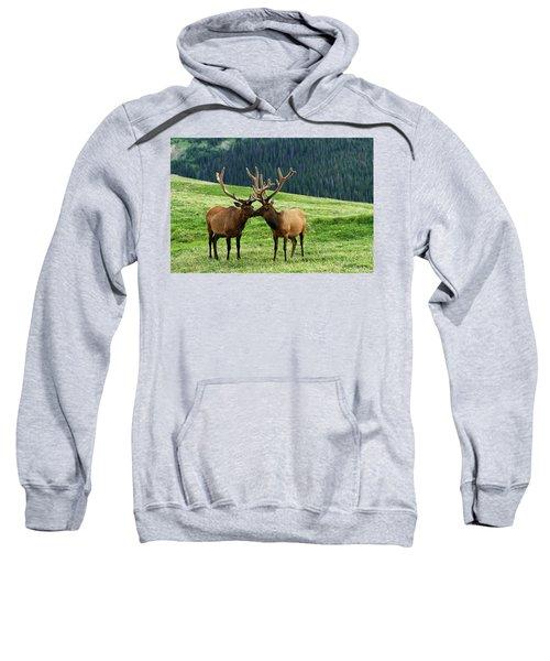 Rocky Mountain Elk 2 Sweatshirt
