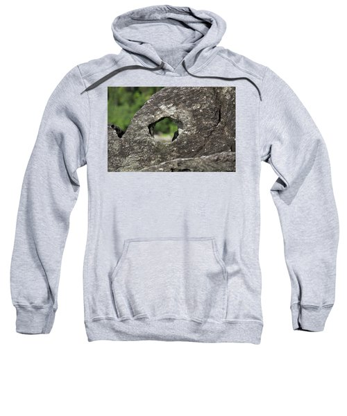 Sweatshirt featuring the photograph Rocky View Point by Debbie Cundy