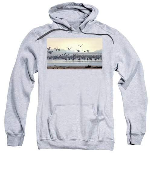 Roosting On The Platte Sweatshirt