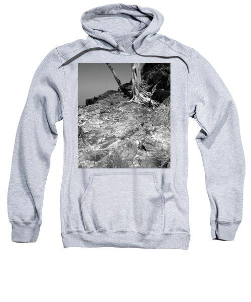Rootflow Sweatshirt