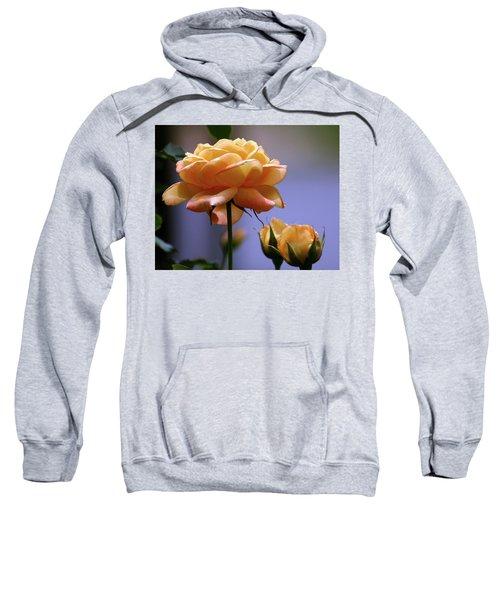 Rose 1156 H_2 Sweatshirt
