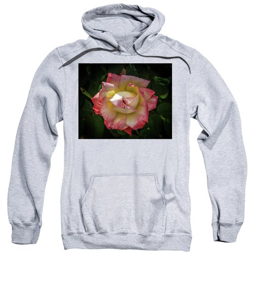 Rose From Mable Ringling's Garden Sweatshirt