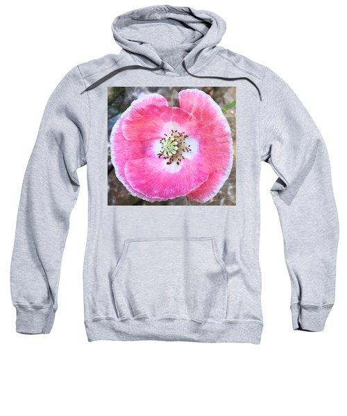 Rose Marble Sweatshirt