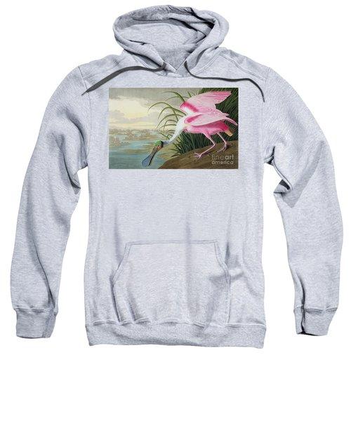 Roseate Spoonbill Sweatshirt by John James Audubon