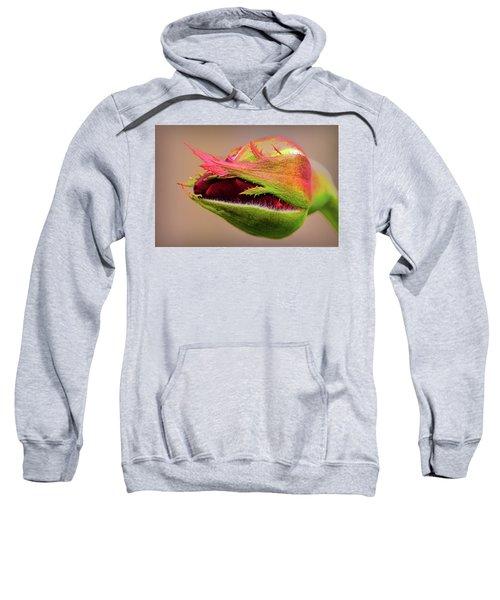Rosebud  Sweatshirt