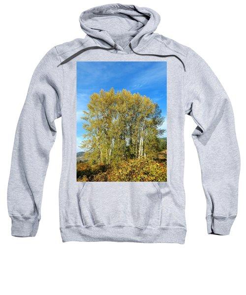 Rosehips And Cottonwoods Sweatshirt