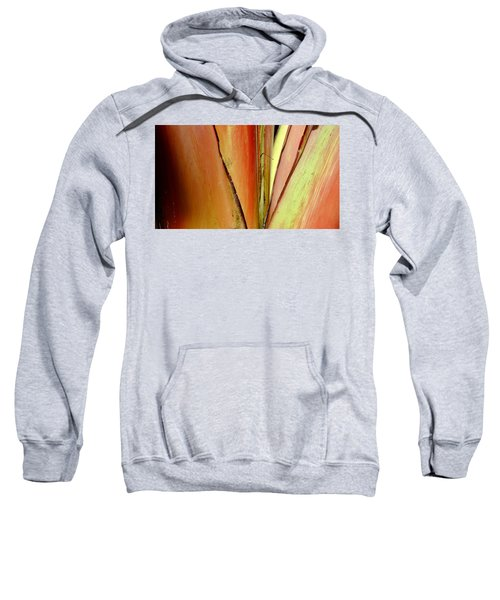 Rouge Sweatshirt