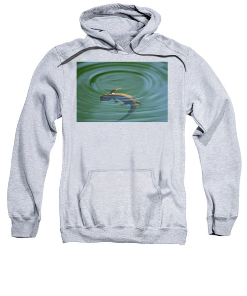 Rough Skinned Newt Sweatshirt