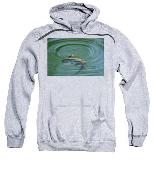 Rough Skinned Newt Sweatshirt