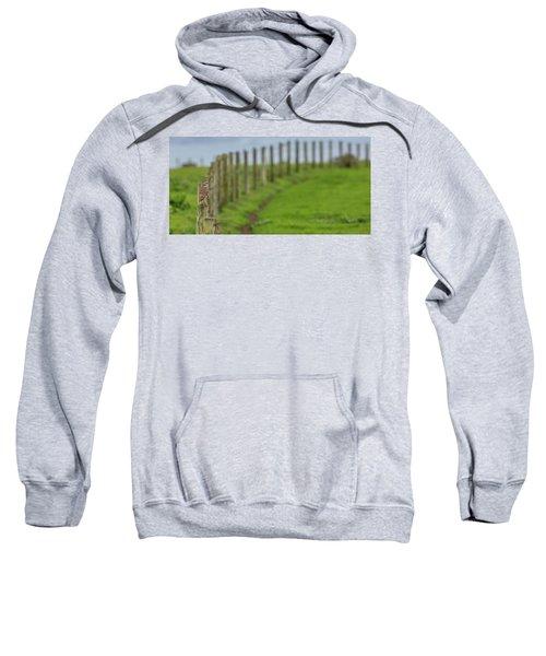 Row View  Sweatshirt