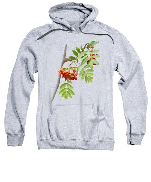 Rowan Tree Sweatshirt