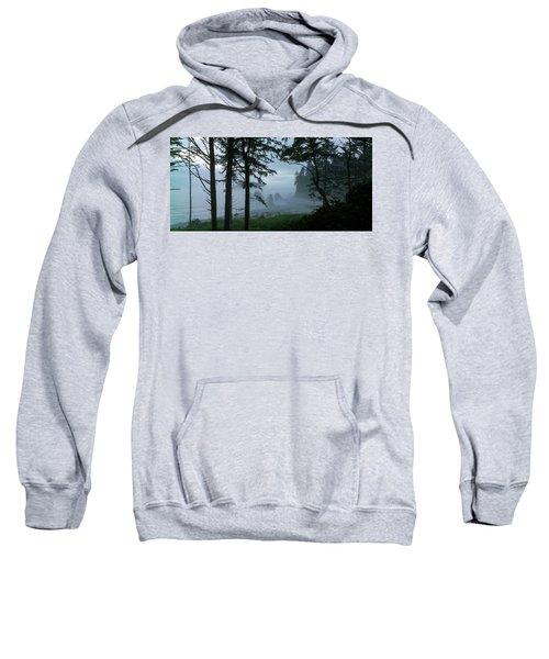 Ruby Beach II Washington State Sweatshirt