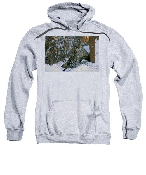 Ruffed Grouse Sweatshirt