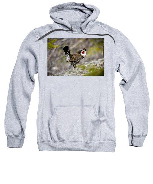 Ruffled Grouse Sweatshirt