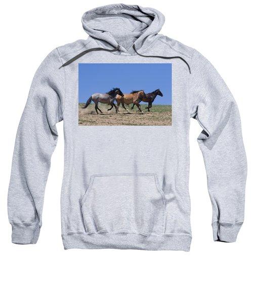 Running Free- Wild Horses Sweatshirt