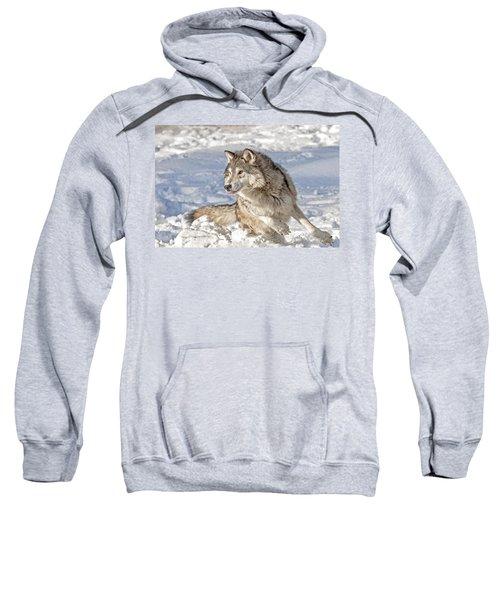 Running Wolf Sweatshirt