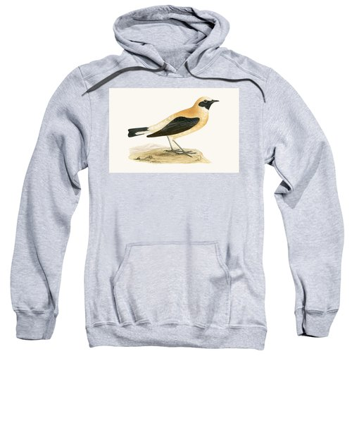 Russet Wheatear Sweatshirt by English School