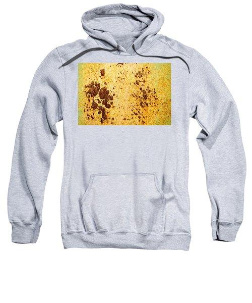 Rust Metal Sweatshirt