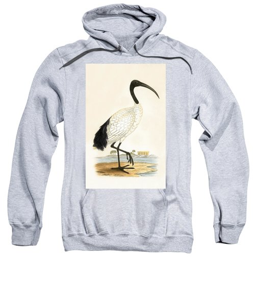 Sacred Ibis Sweatshirt
